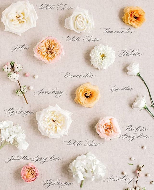 Floral flatlay perfection by the amazing @debbiewongdesign! We can't wait to see all of your gorgeous spring weddings! ✨ Florals: @creativeedgeflowersyyc Photo: @debbiewongphoto