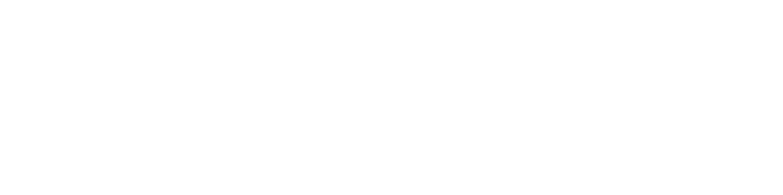 Endure Strong Logo - All White.png