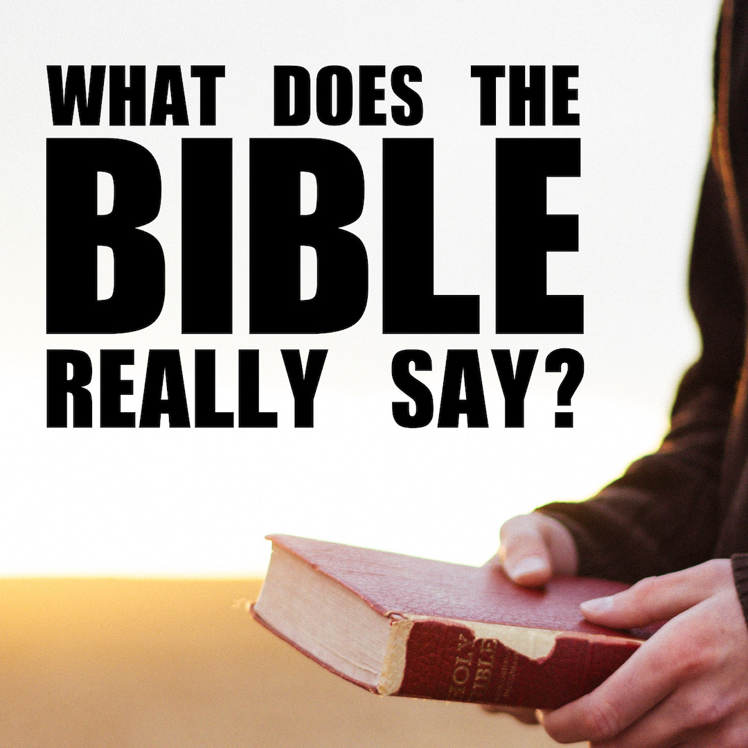 WHAT DOES THE BIBLE REALLY SAY?