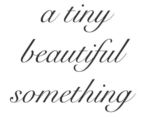 a tiny beautiful something