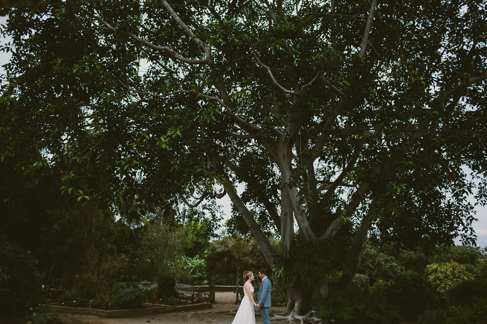 sandiego-botanic-garden-wedding-41.jpg