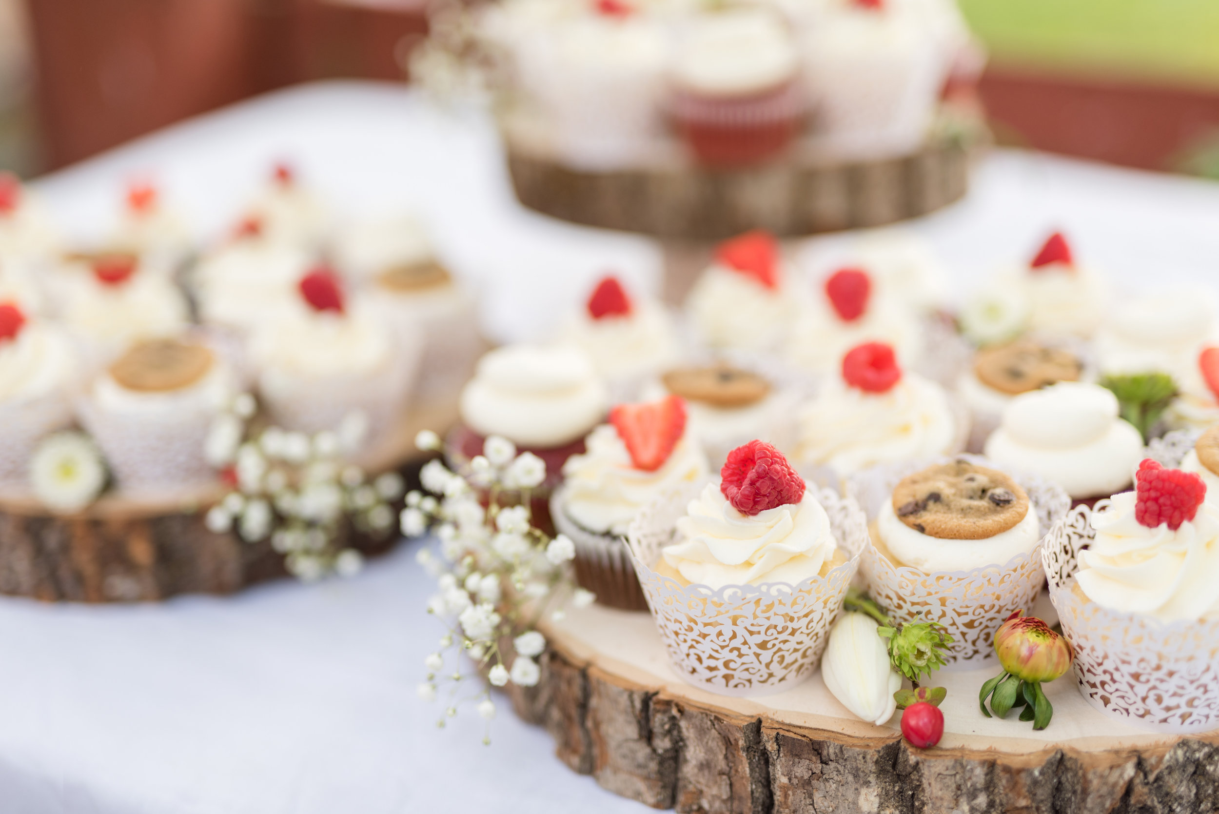 Cupcakes - We can theme your cupcakes around your event and cake design. They are beautiful and taste as good as they look! Our cupcakes come in standard or mini sizes. Contact us for details!