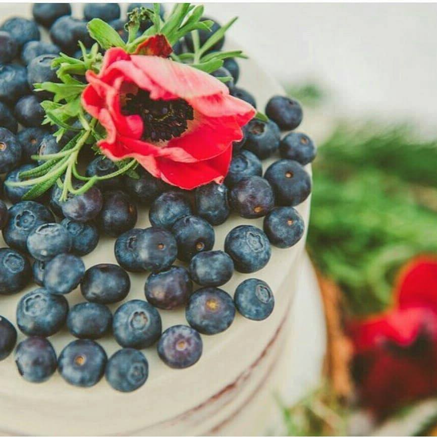 Winter Berry Wedding Cake | Utah Wedding Cakes
