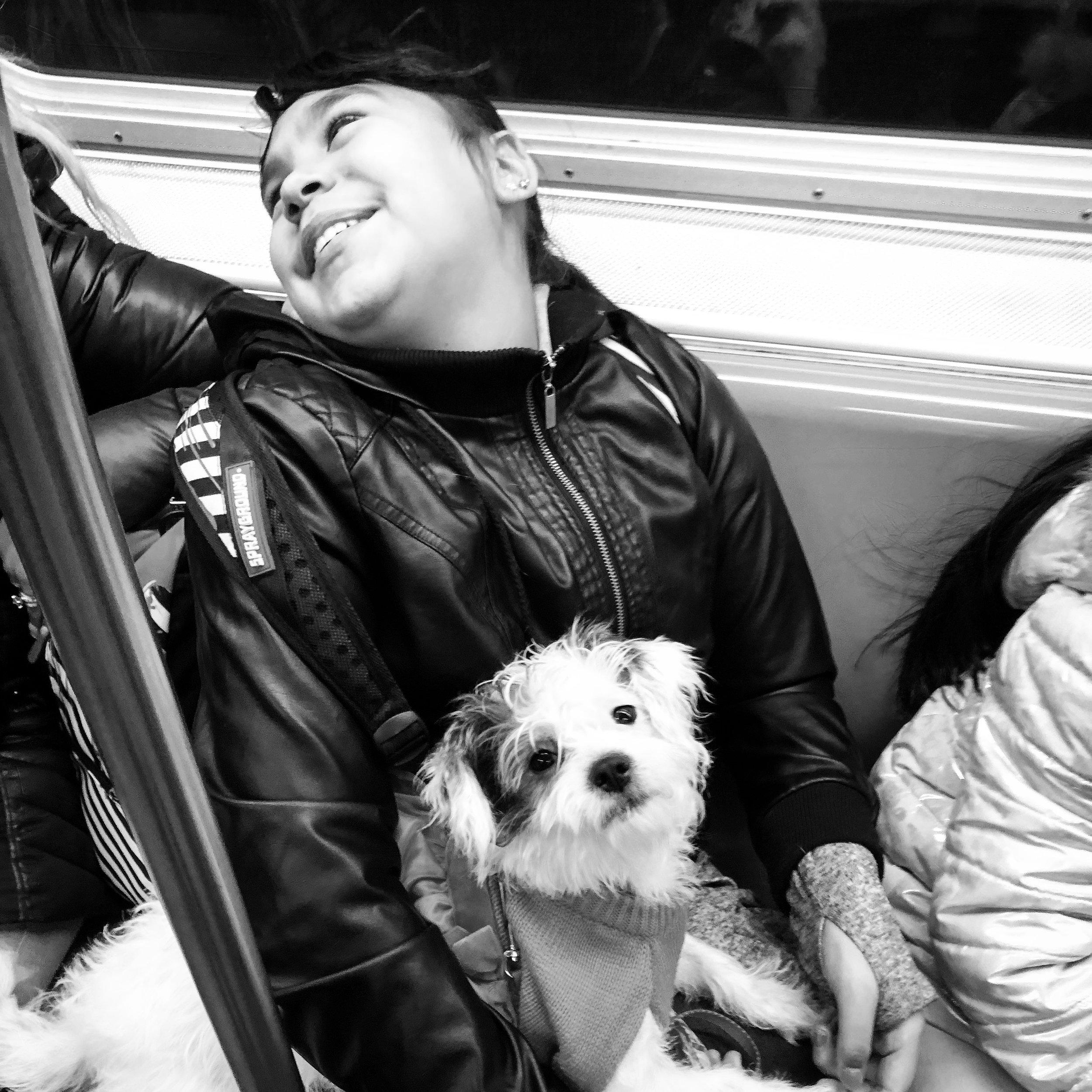 Puppy Love (Dec. 23, 2018)