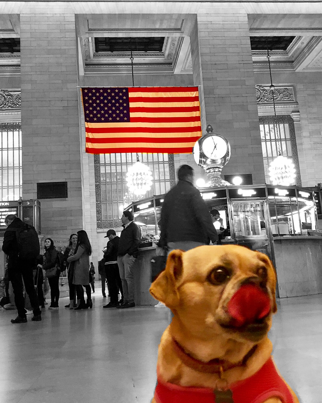 Grand Central Gertie (NYC 10/2017)