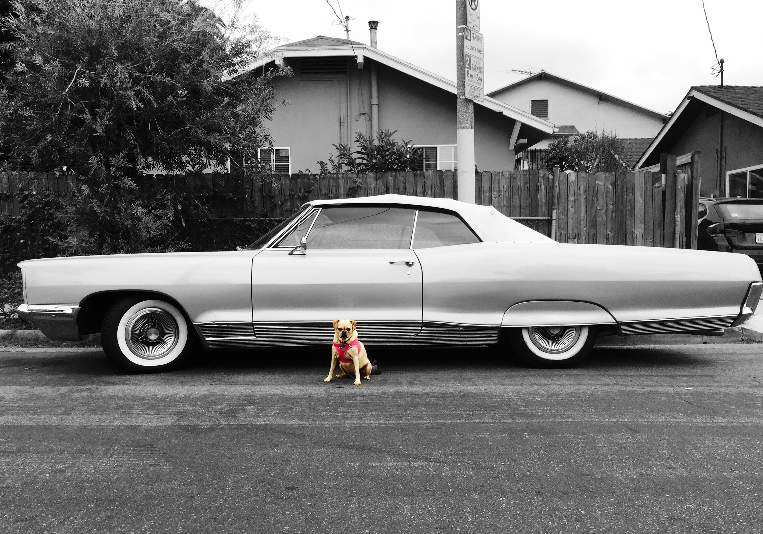 Classic. (LA, 2015)