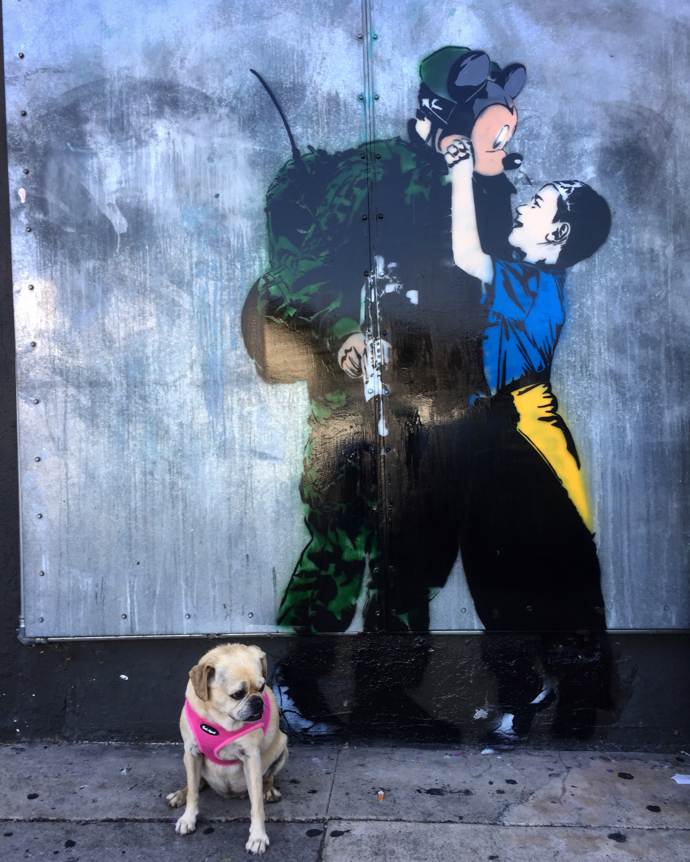 Puggles for ✌️(LA 2017)