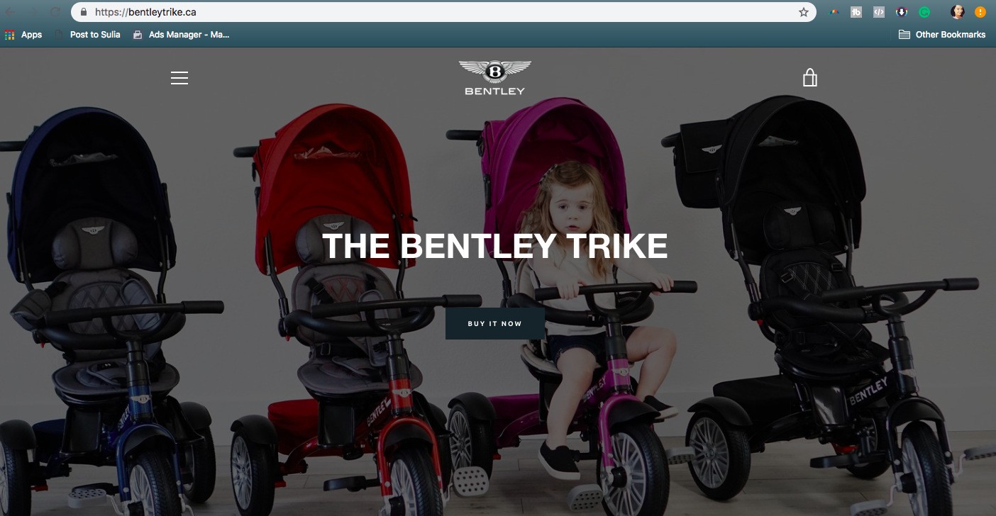Bentley Trike - We created the marketing strategy and influencer campaign that saw massive online success for Posh Baby Kids the US and Canadian Distributor of the Bentley Trike.
