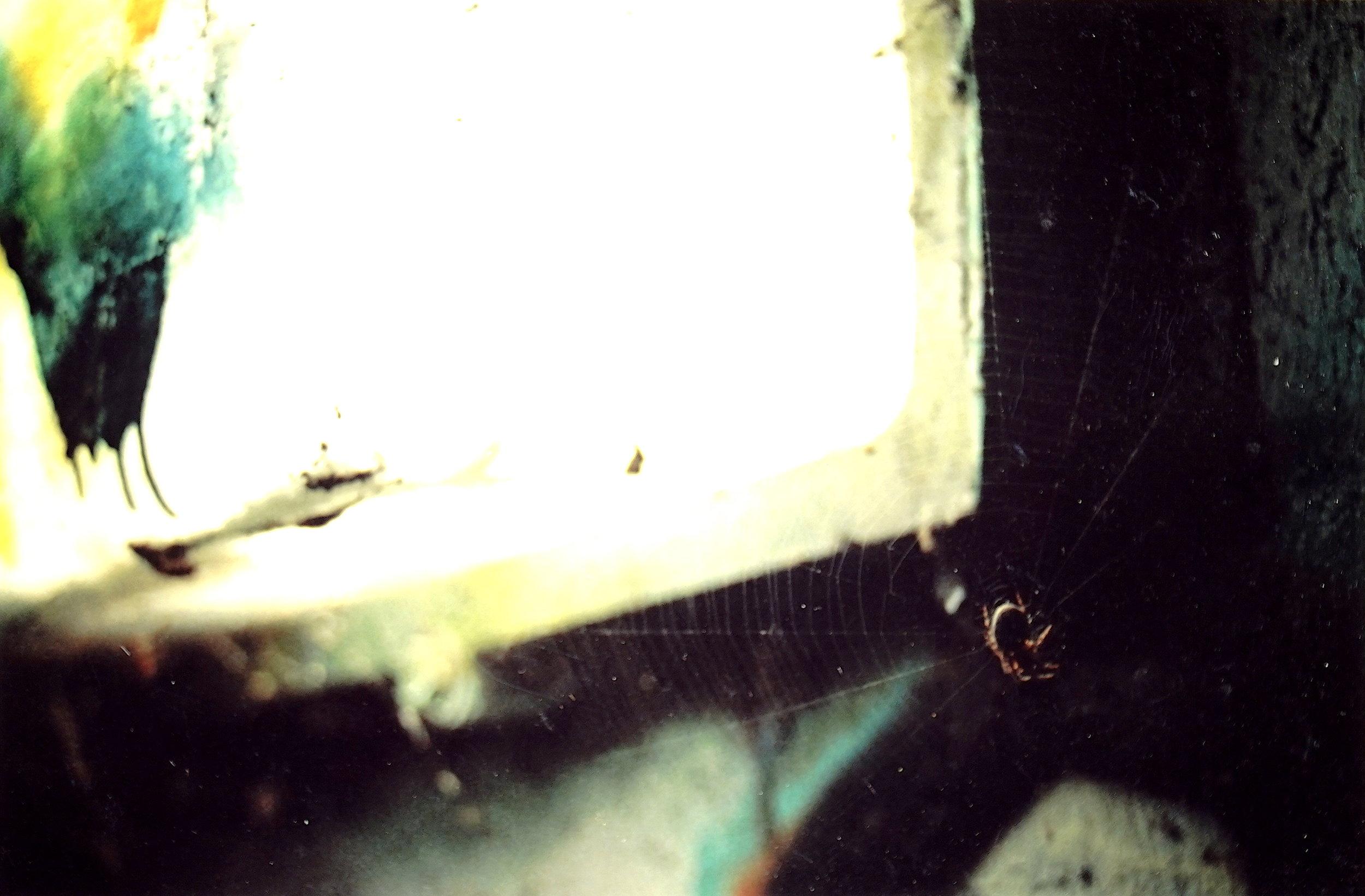 UNDERPASS LIGHT SPIDERS (2006)