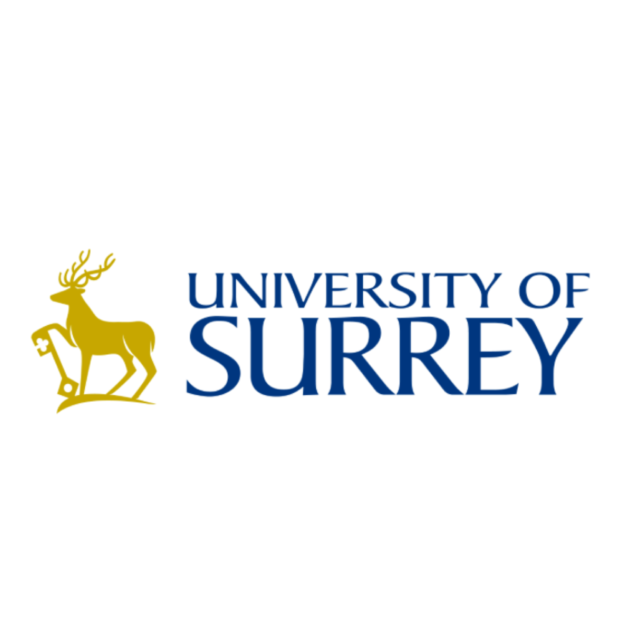 University of Surrey.png