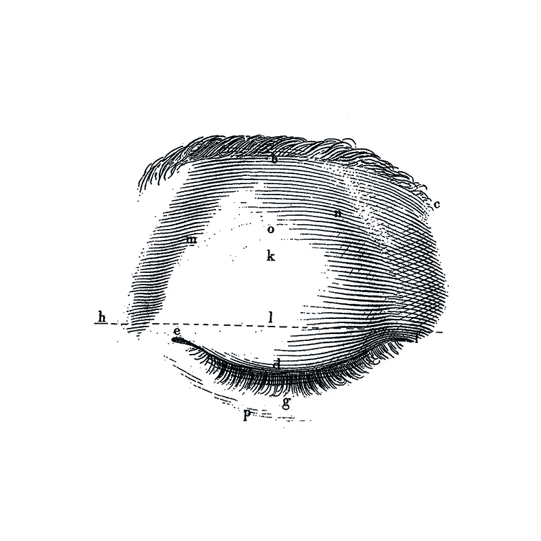 E05.jpg