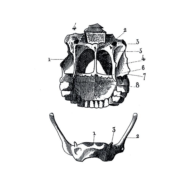 H15.jpg