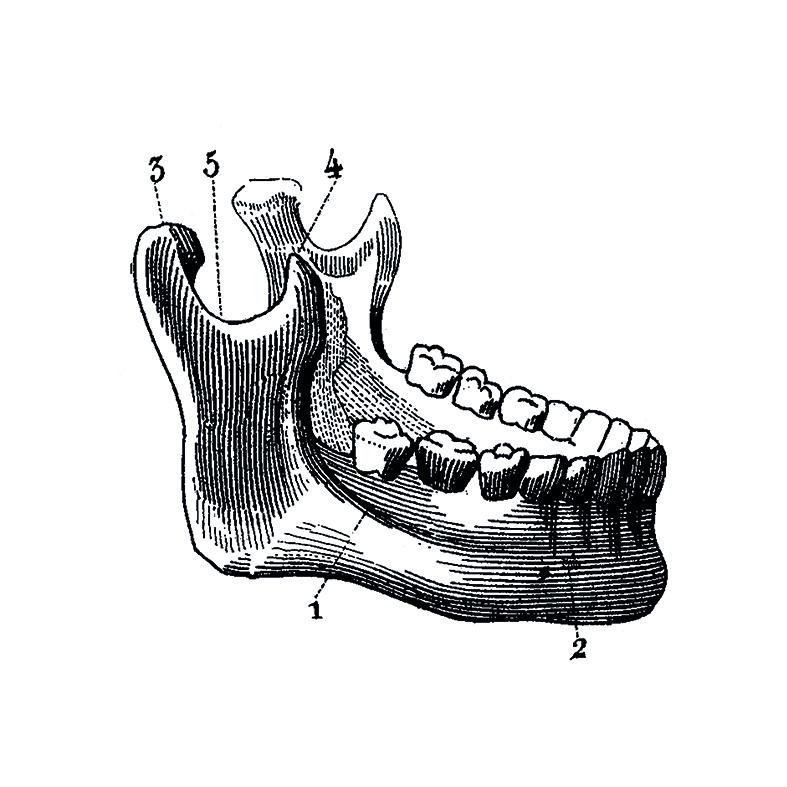 H18.jpg
