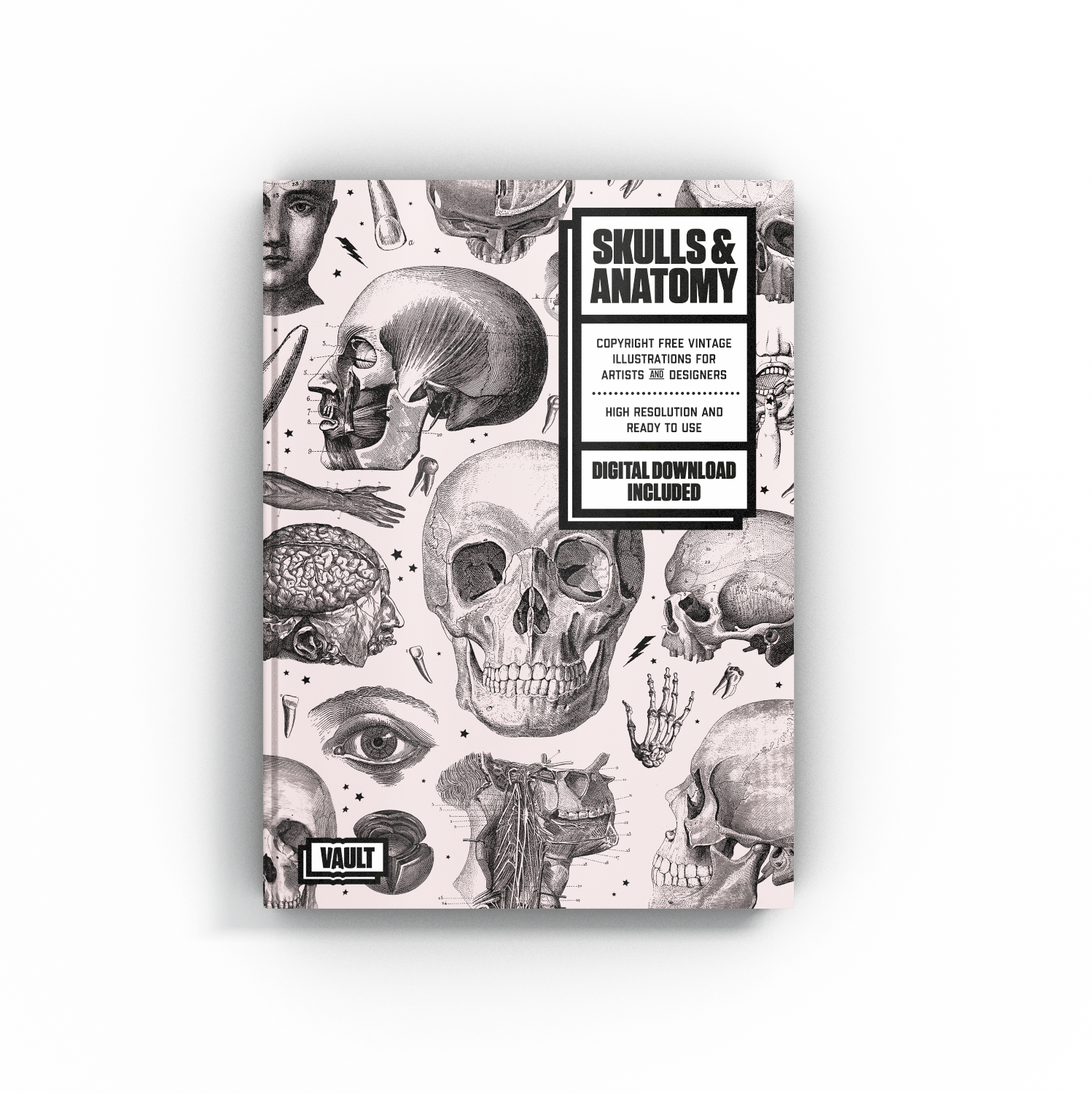 Navigation - We've made navigating this collection easy with the Skulls & Anatomy reference eBook. Each image comes with a alphanumeric code that will align with our categorised folders in your download.