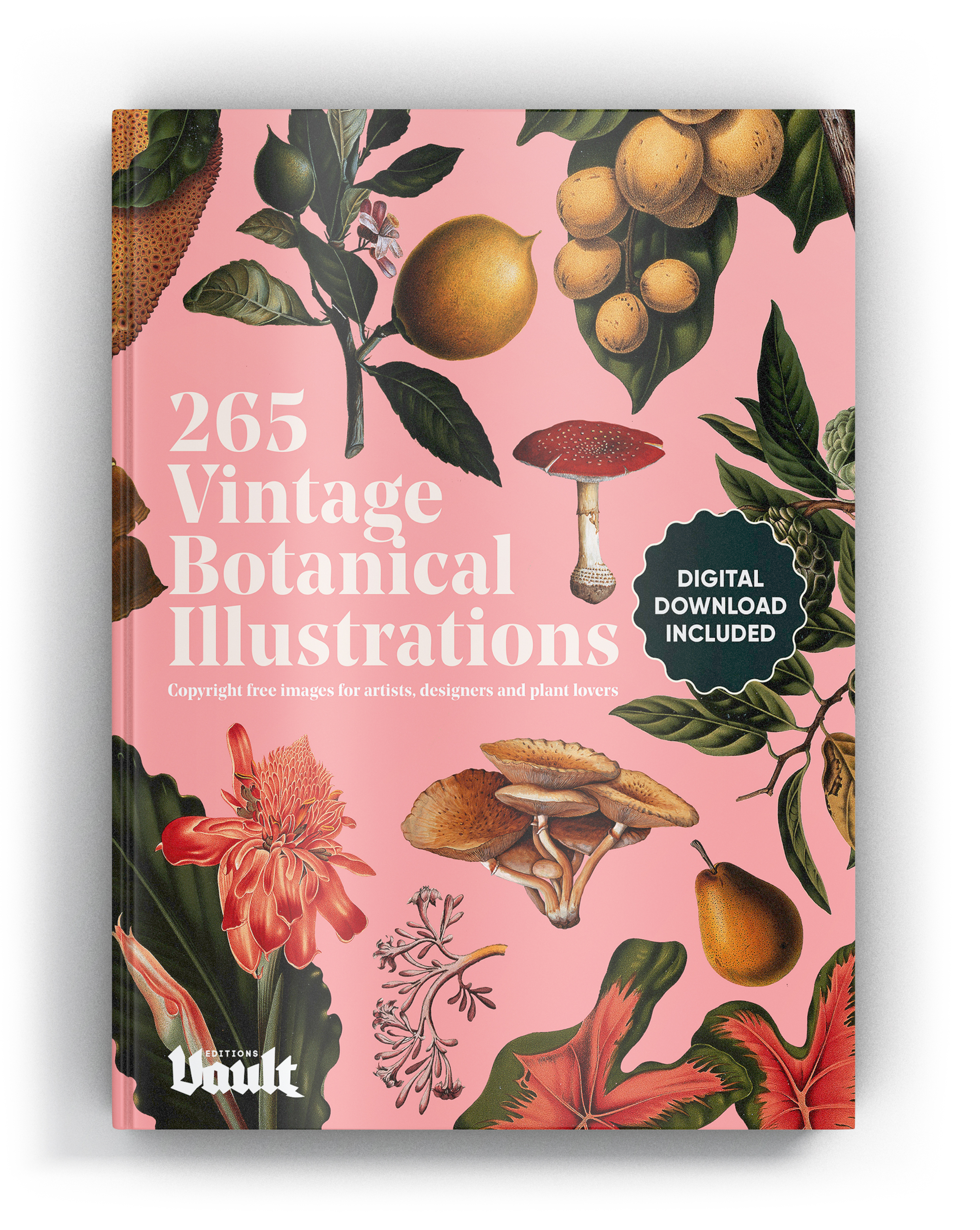 Copyright-free Botanical Illustration.jpg