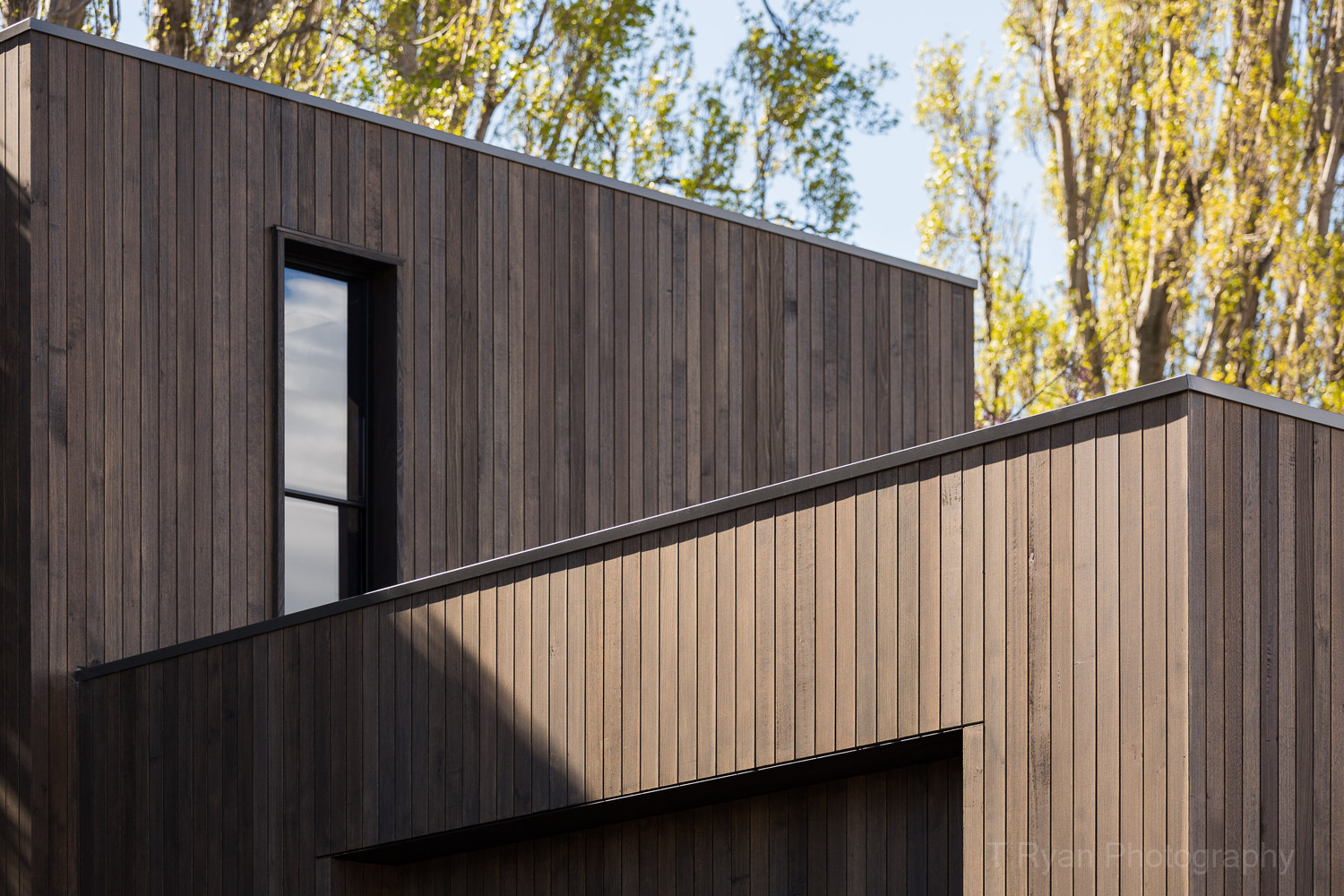 Blue Magnolia House, Hobart - MGArchitecture.Interiors