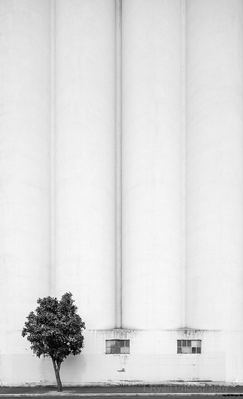 Melbourne-Modernism-57.jpg