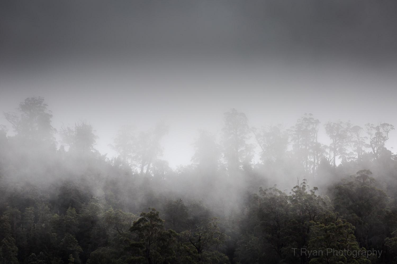 West_Coast_Tasmania30.jpg