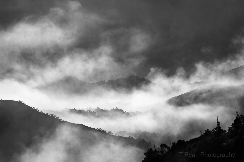 West_Coast_Tasmania46.jpg