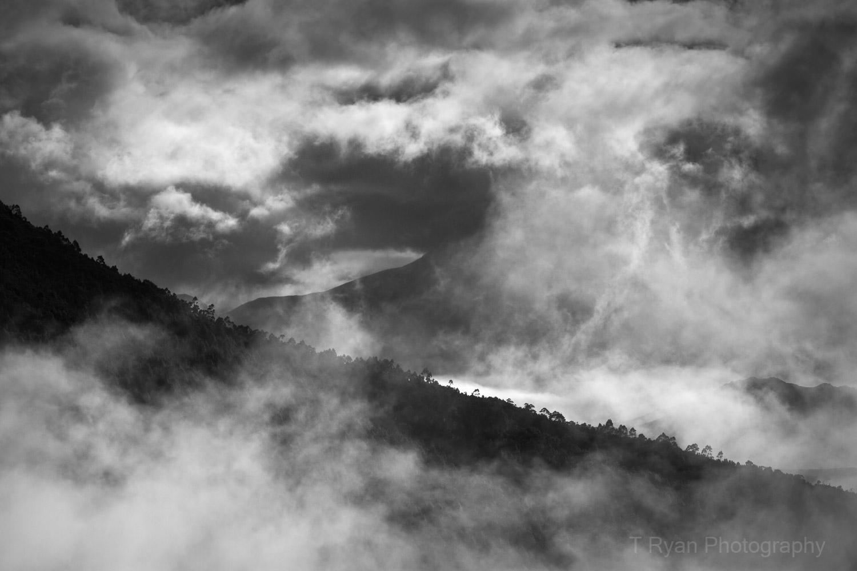 West_Coast_Tasmania45.jpg