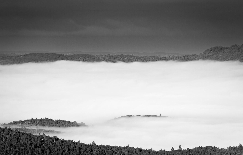 West_Coast_Tasmania54.jpg