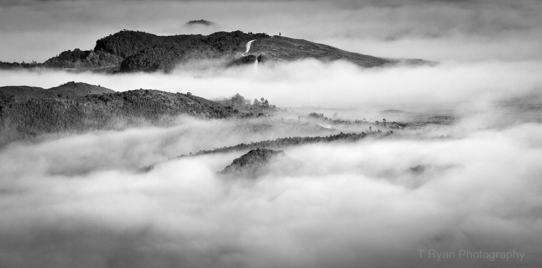 West_Coast_Tasmania55.jpg