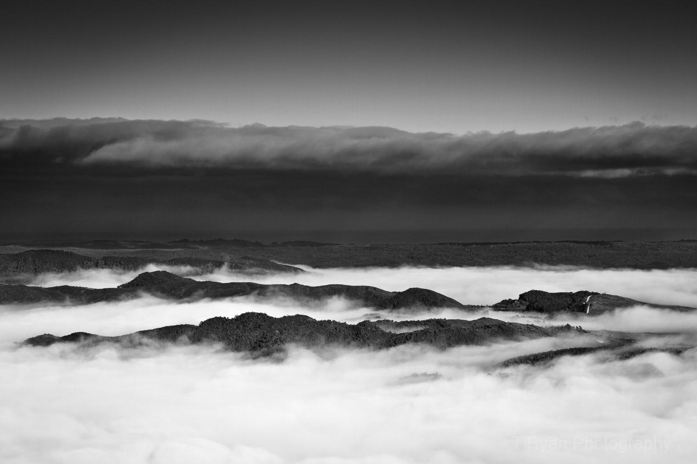 West_Coast_Tasmania58.jpg