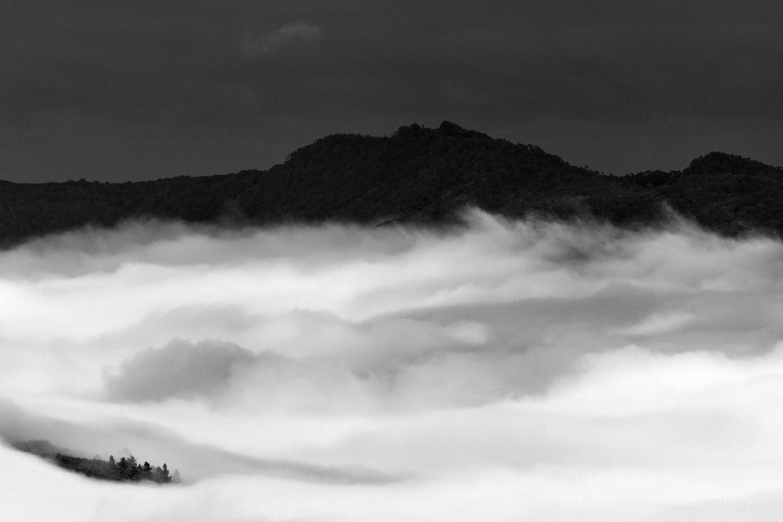 West_Coast_Tasmania69.jpg