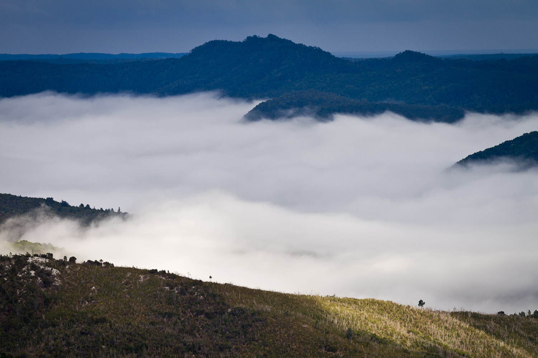 West_Coast_Tasmania71.jpg