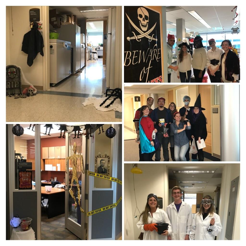 Halloween in the Life Sciences Building, October 2017.