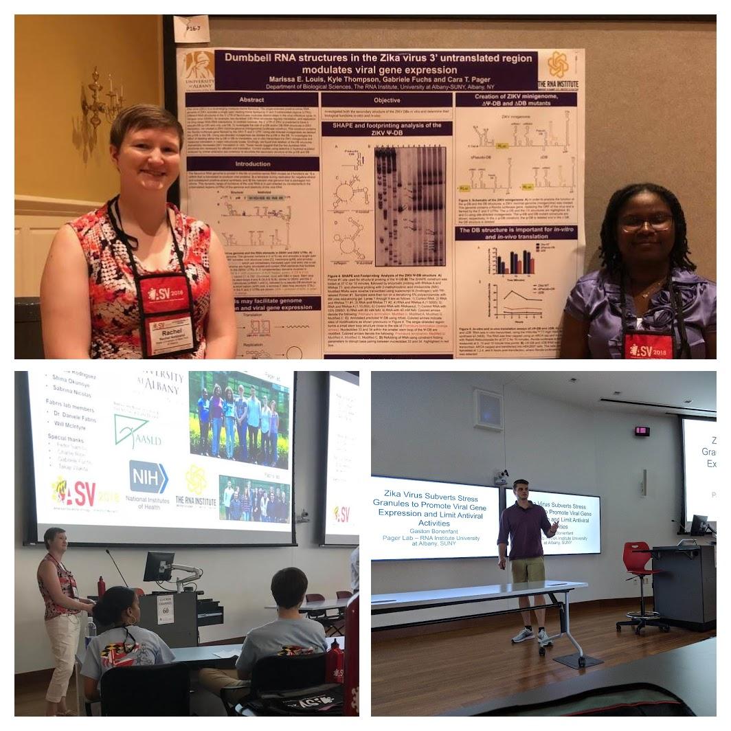 Rachel, Marissa & Gaston presenting at ASV 2018, College Park, MD.