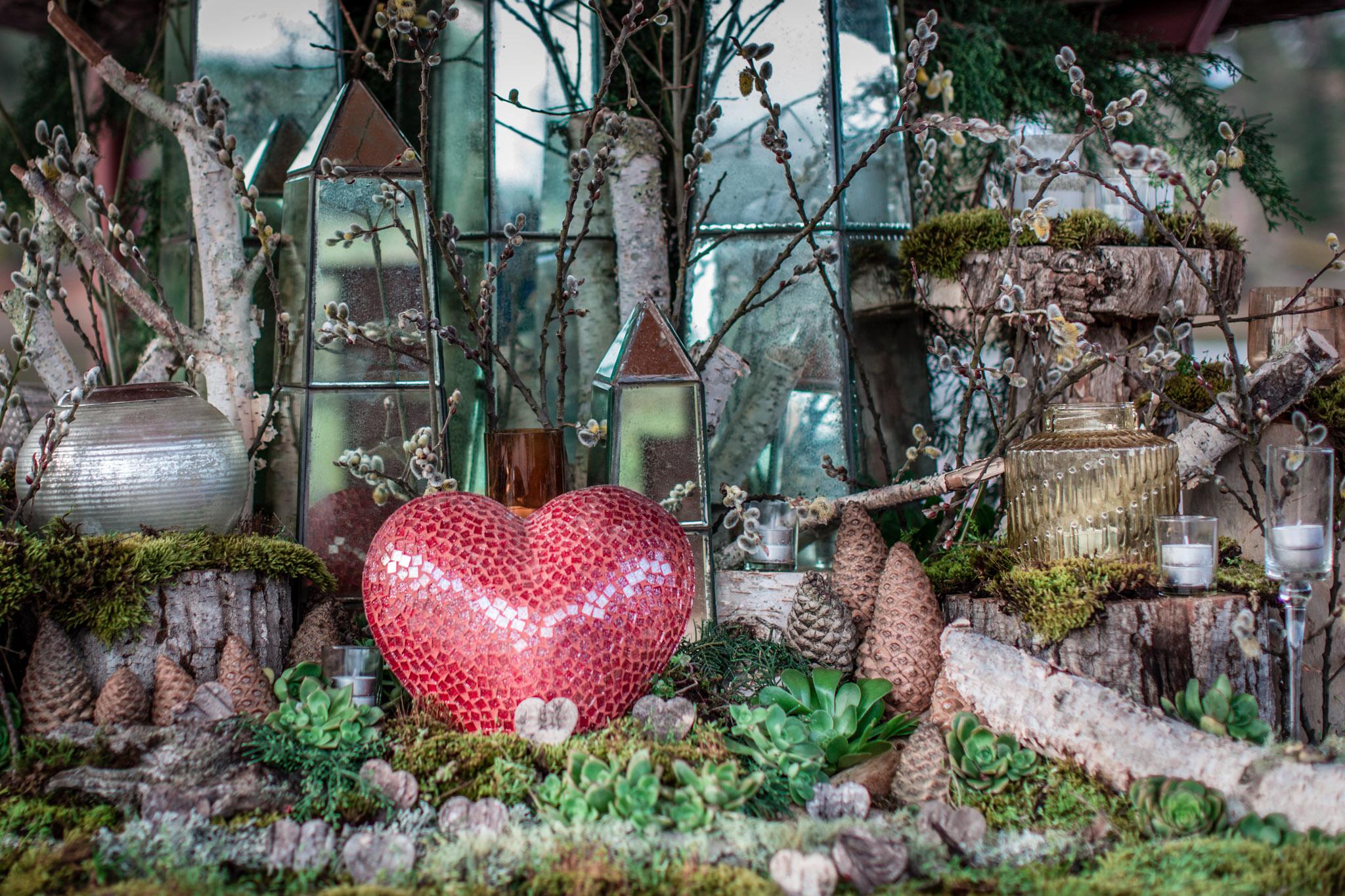 Enchanted Forest - Blake and TalithaLinga Long EstateTenacious Photography