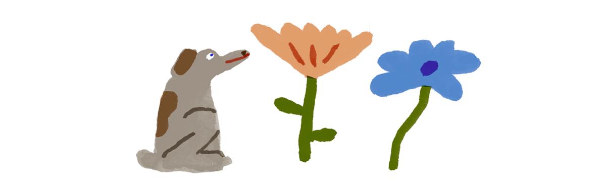springdog4awebsite.jpg