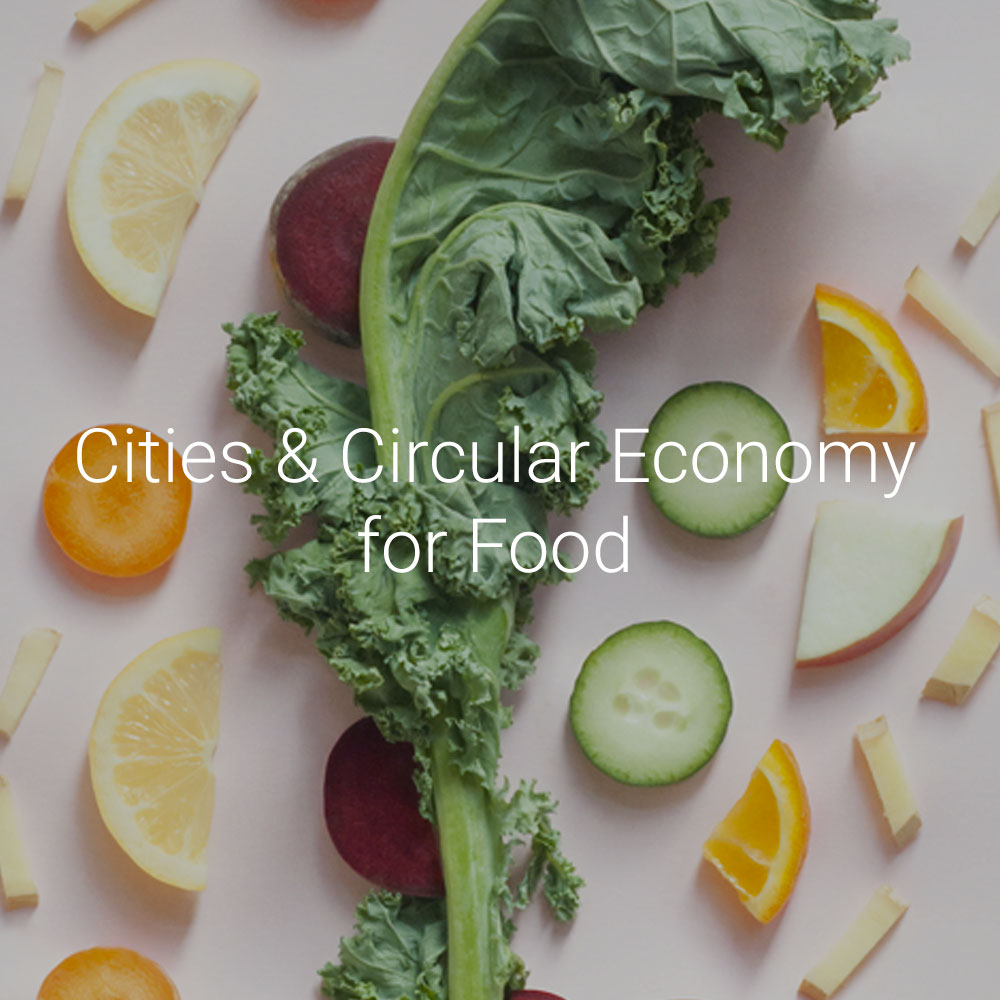 PACE-Projects-Cities-Circular-Economy-Food-Thumb-1000px-v1.jpg