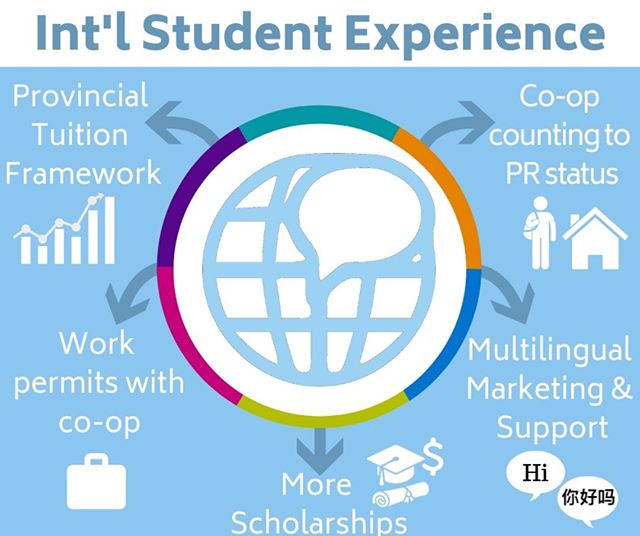 International Students (国际学生体验) should have the same opportunities to excel at Waterloo! #VoteIgnite🗳 to address co-op counting to Permanent Residency (PR), lobbying for an int'l student tuition framework, automatic work permit apps with co-op, and more!  #InternationalTuition💵 #Coop #PermanentResidency #TeamIgnite🔥 #VoteIgnite🗳