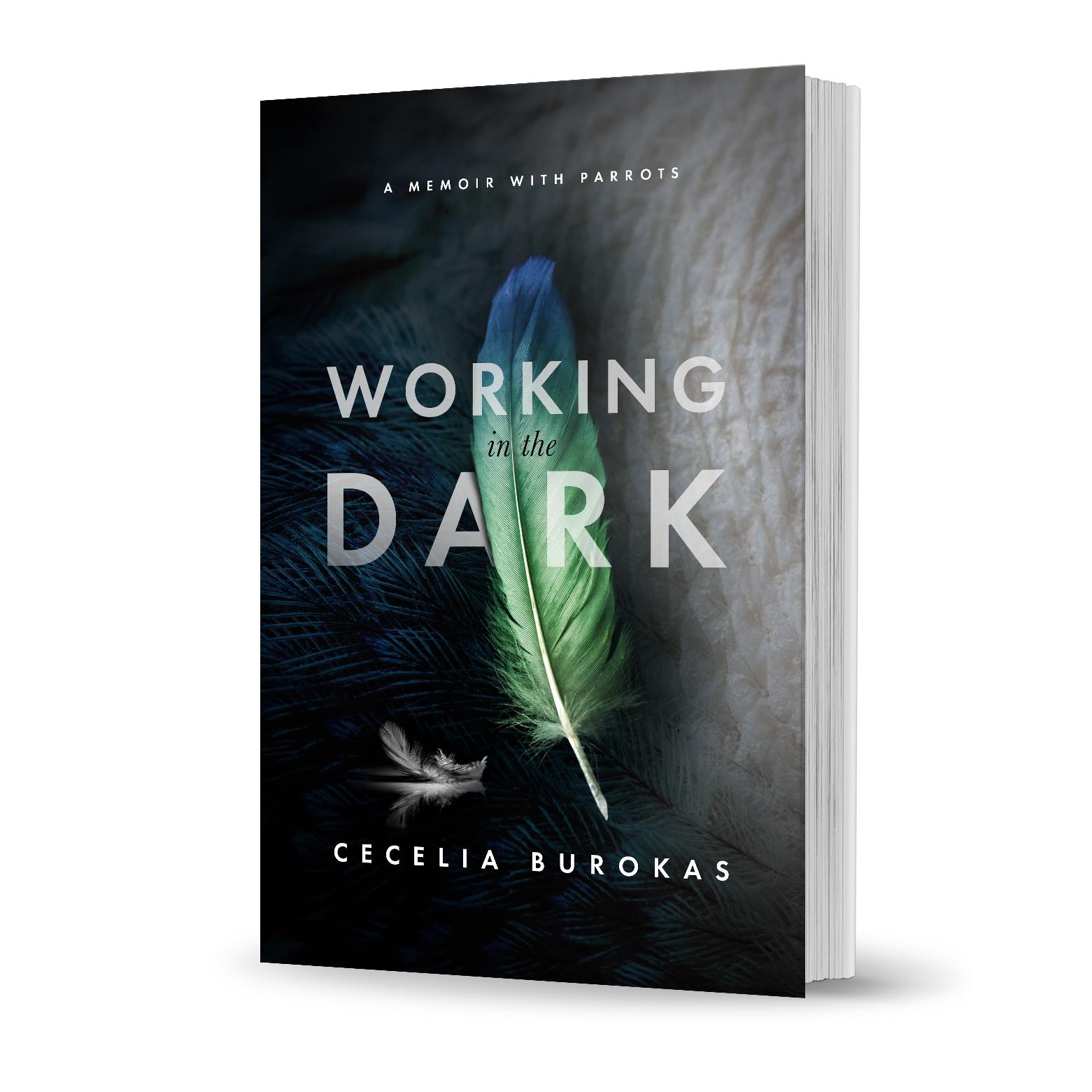 Cover.Cecelia book.jpg