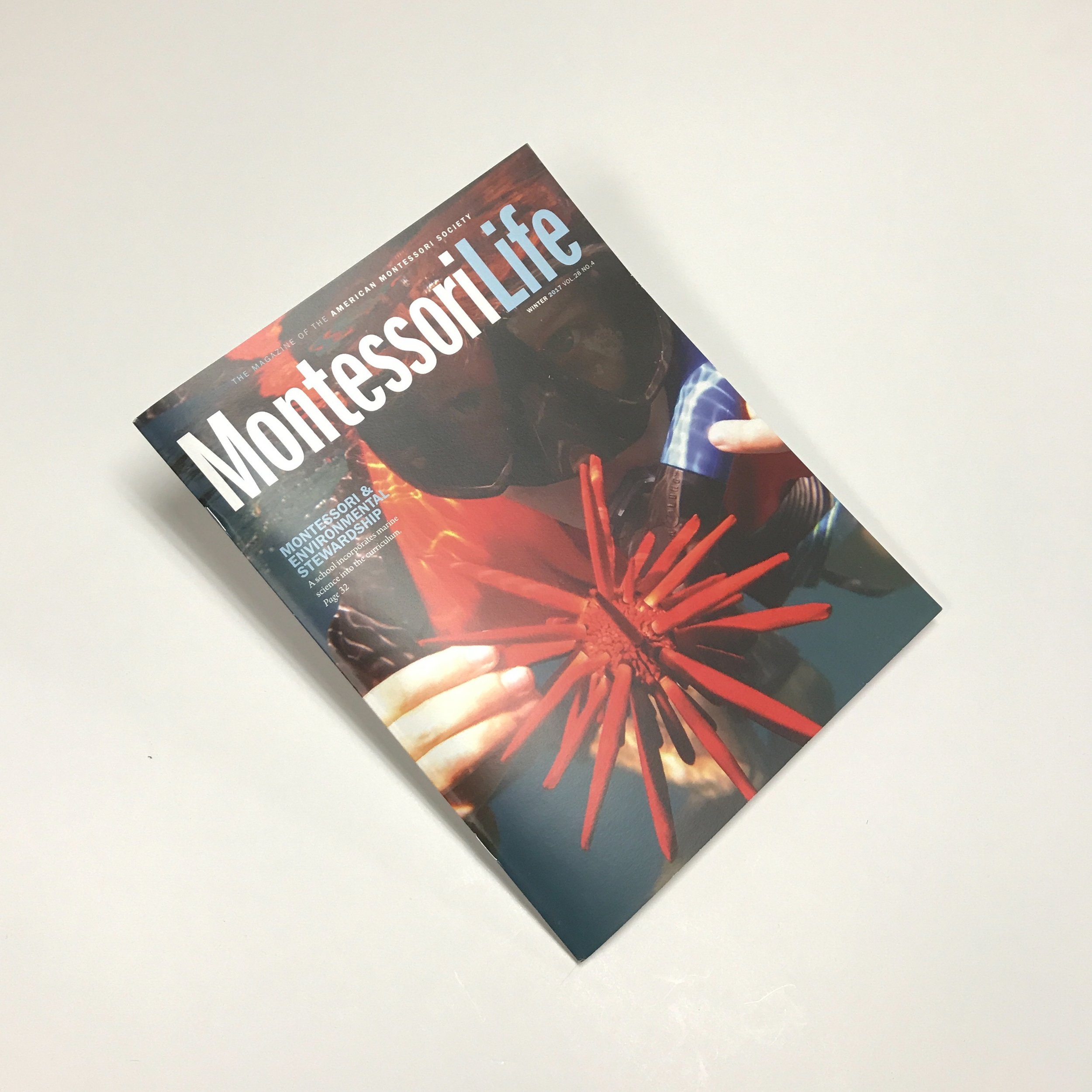 Booklet-Montessori-Anderberg-Innovative-Print Solutions-Twin-Cities.JPG