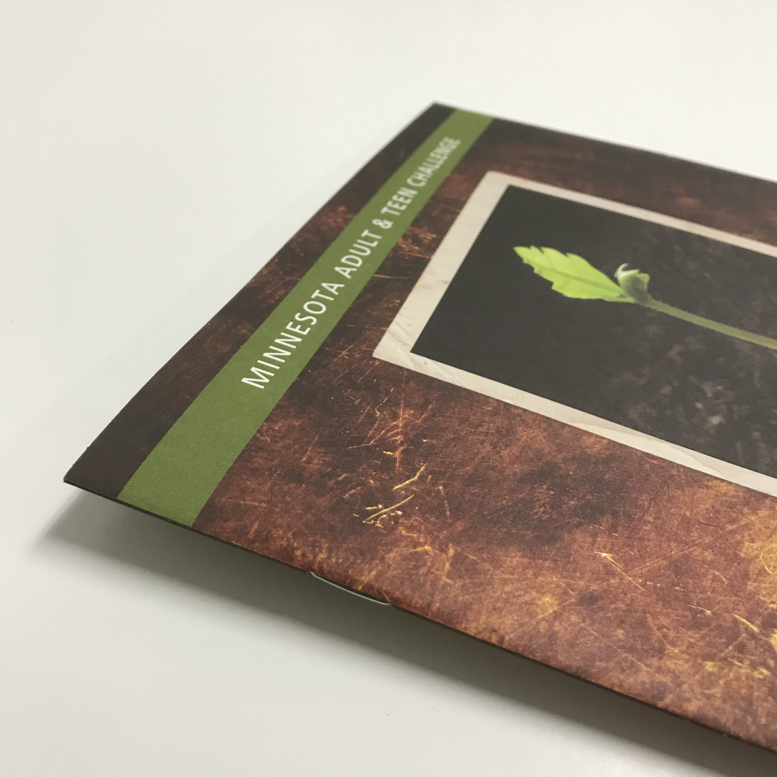Non-Profit saddle stitched booklet printed in Minneapolis by Anderberg Print