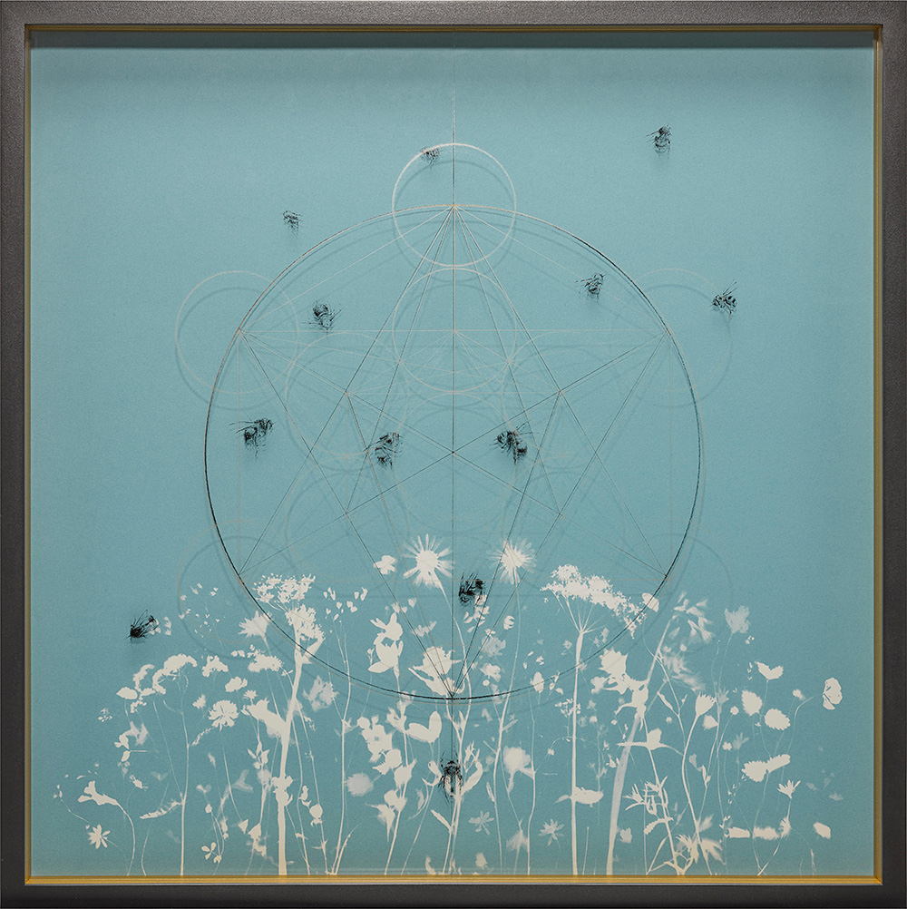 Jessica-Albarn-Golden-The-Blue-Meadows-of-Eve-2.jpg