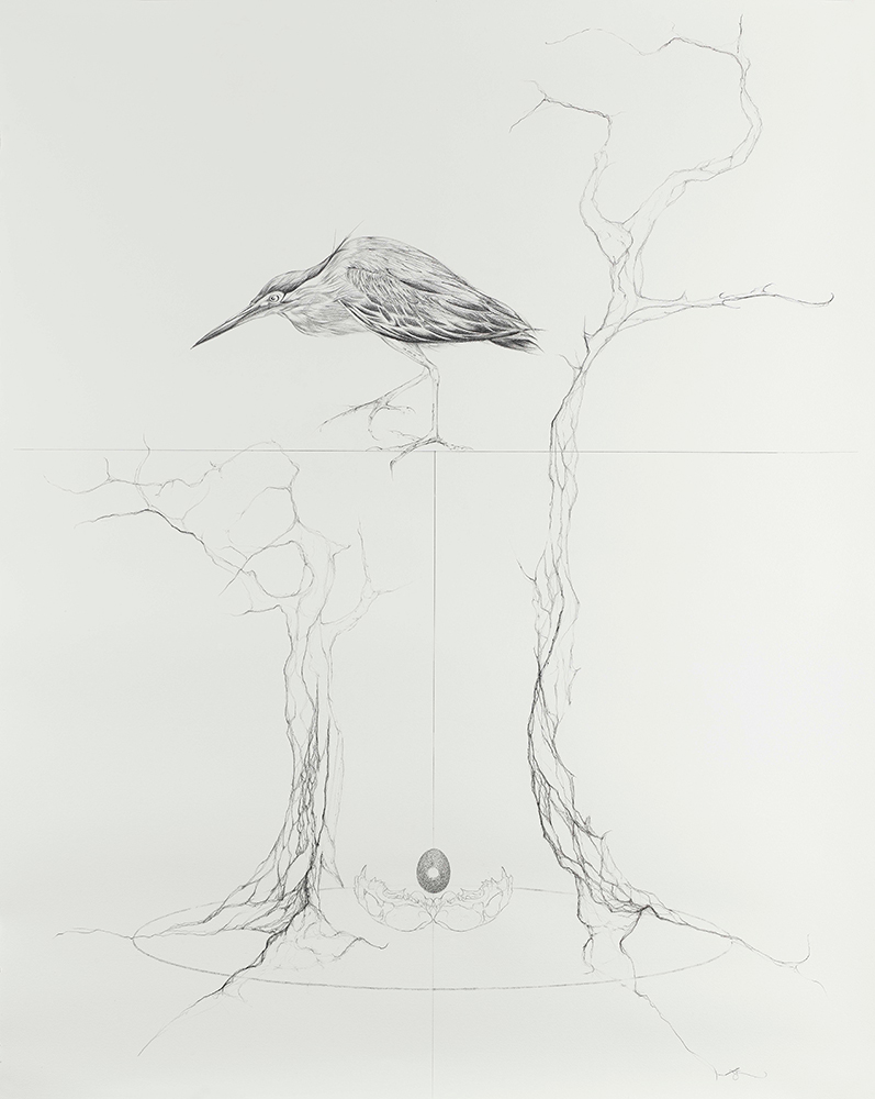 Jessica-Albarn-REUNION-NIGHT-HERON-pencil-on-paper-4ft-x-6ft.jpg