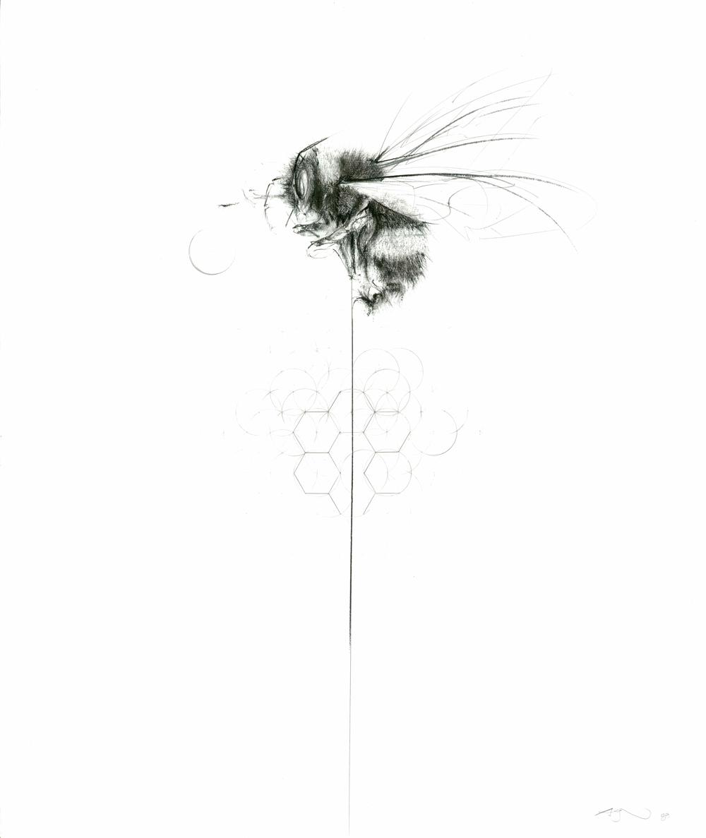 Balancing Bee