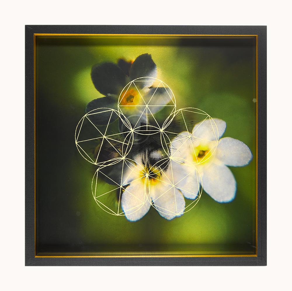 Bumblebee Treasure Box