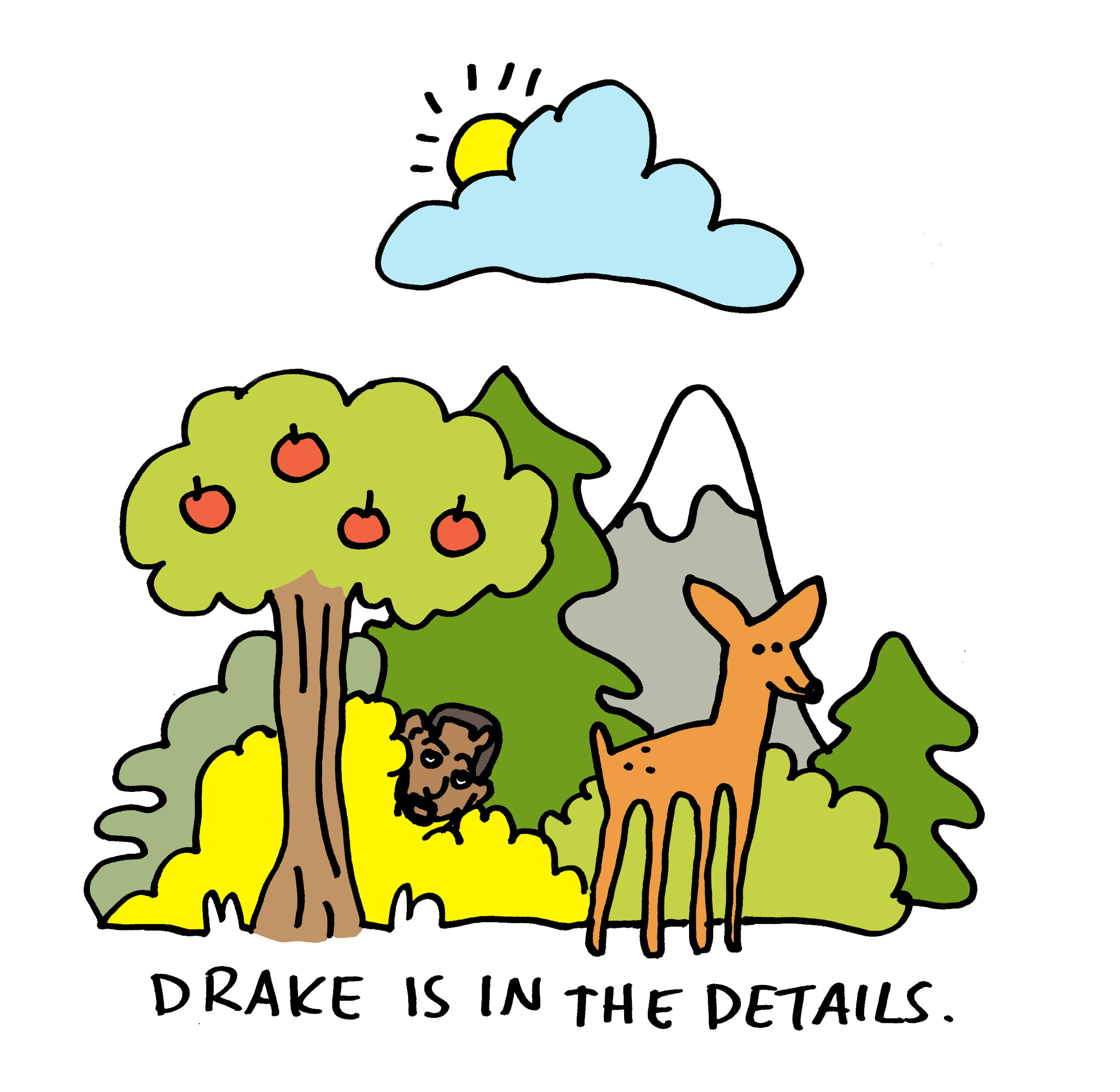 Drake is in the details