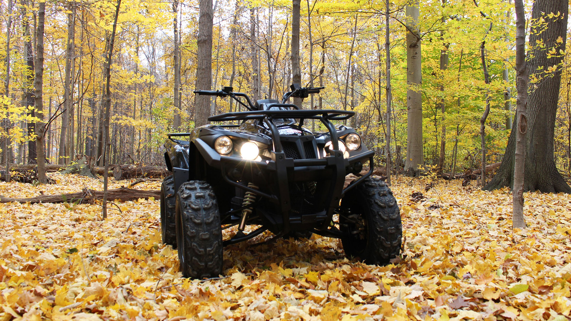 DRR Stealth Electric ATV alone in the woods..jpg