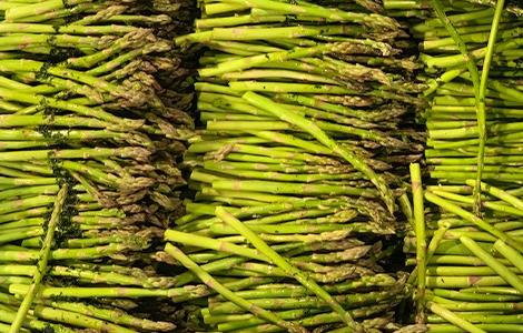 fresh-texas-asparagus.png