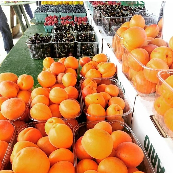 Bizjak Farms   produces premium local fruit sustainably grown in the Niagara region.