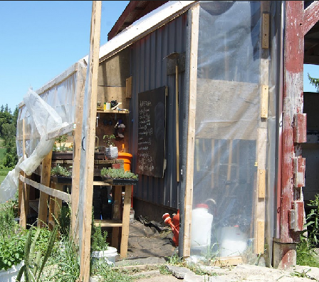 Sprouting shed, made with re-used, and a few new, materials