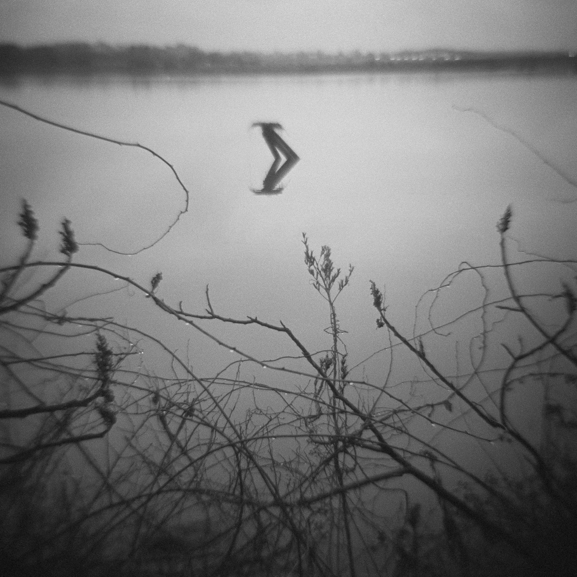 Untitled (nest), 2013