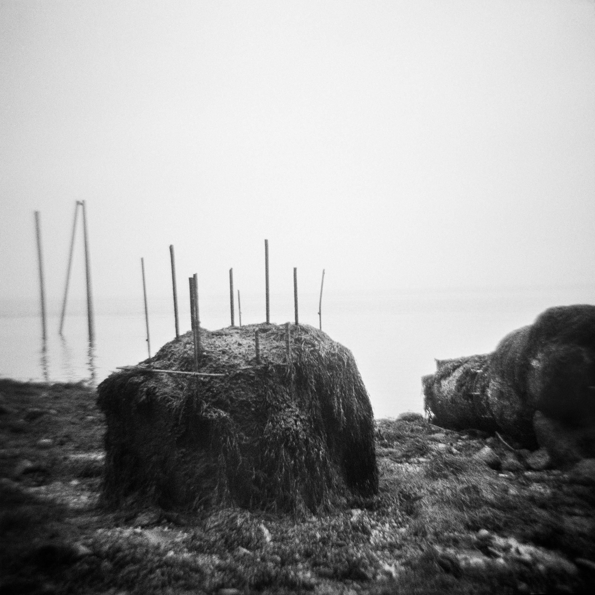 Untitled (rocks, rods), 2014
