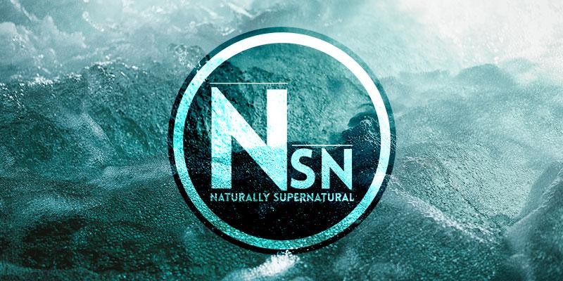 nsn-banner.jpg